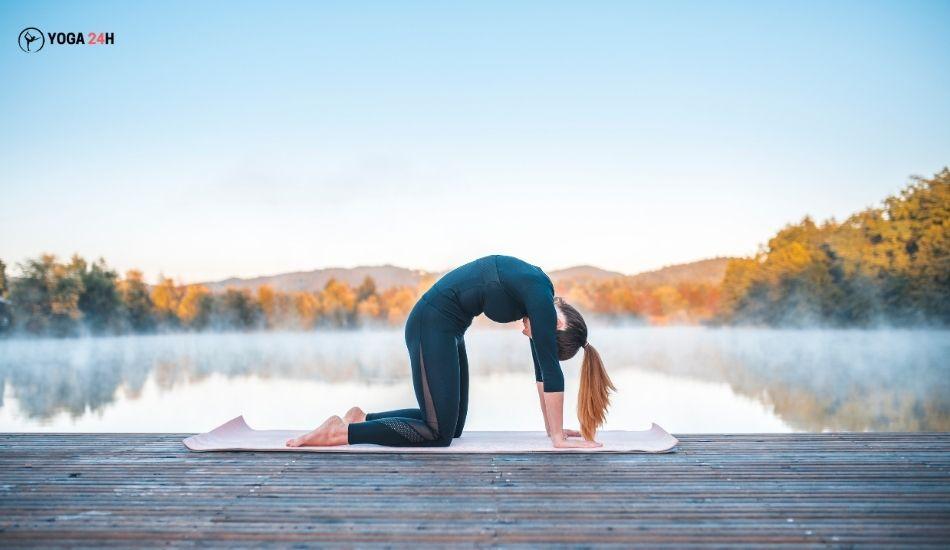 Yoga buổi sáng tư thế con mèo cat pose