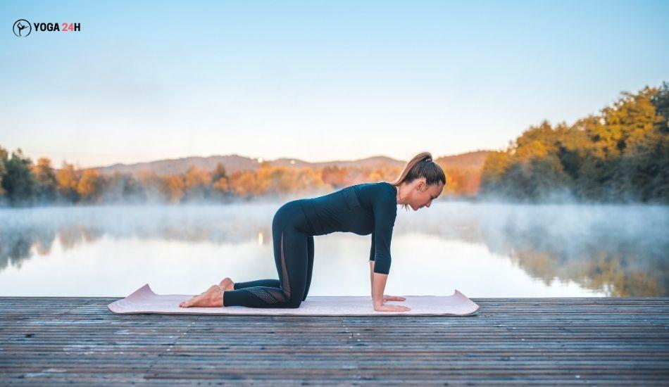 Yoga Buổi sáng tư thế cái bàn table top