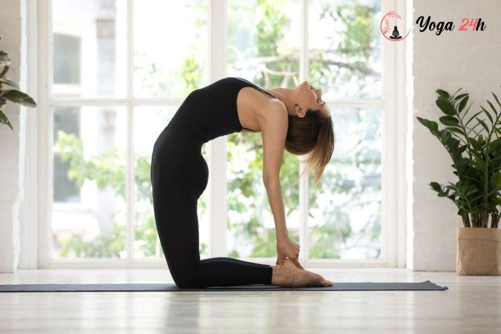 hướng dẫn luyện tập tư thế lạc đà (camel pose, ustrasana)