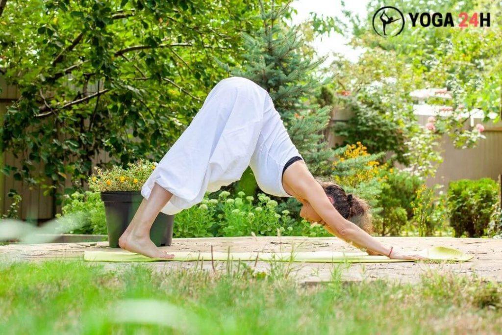 Thực hành động tác yoga ngay trong vườn nhà bạn