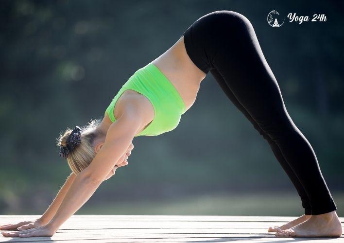 Yoga giảm cân tư thế chó up mặt